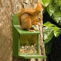 eekhoorn voederpakket